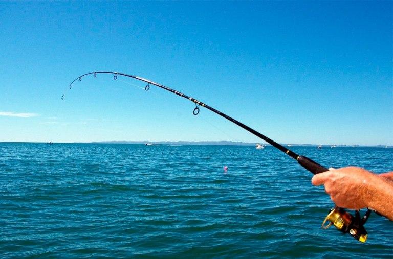 9. Has un tour de pesca