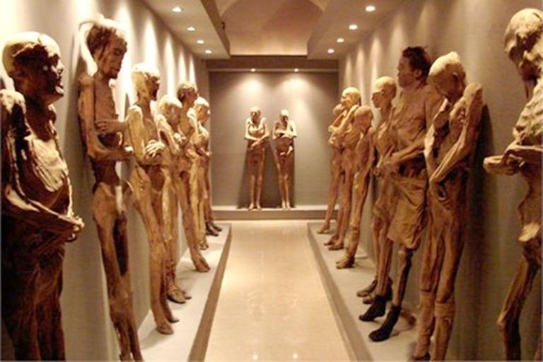 8-como-se-dieron-a-conocer-las-momias-en-mexico