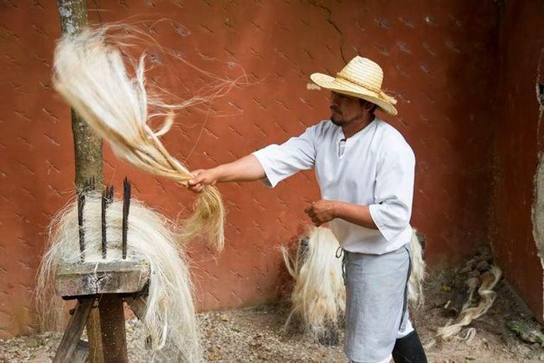 11-como-fue-eso-del-yucatan-henequenero