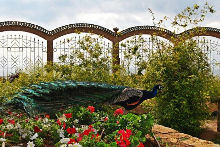 4-visita-el-jardin-encantado-y-el-salto