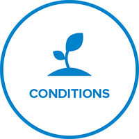 Badge Conditions