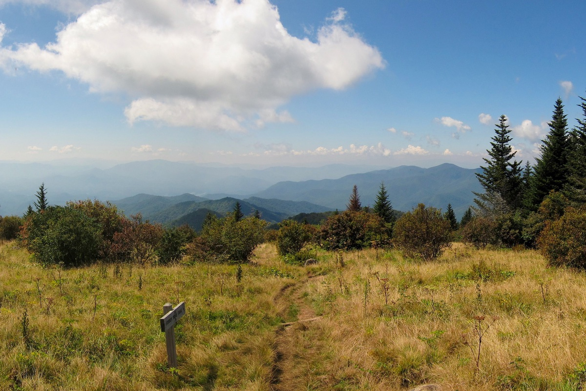 Stunning view from Andrews Bald in Great Smoky Mountains National Park.