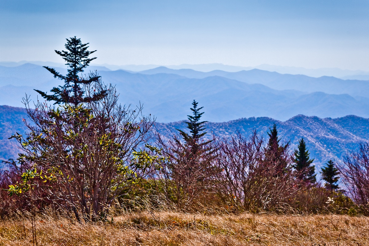Breathtaking view from Andrews Bald in Great Smoky Mountains National Park.