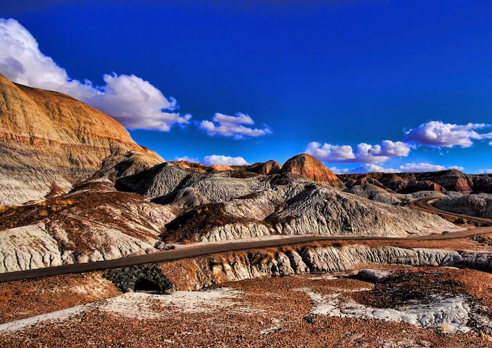 Blue Mesa Trail in Petrified Forest National Park.