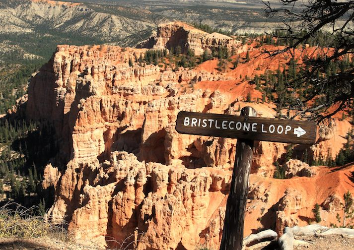 Bristlecone Loop in Bryce Canyon National Park.