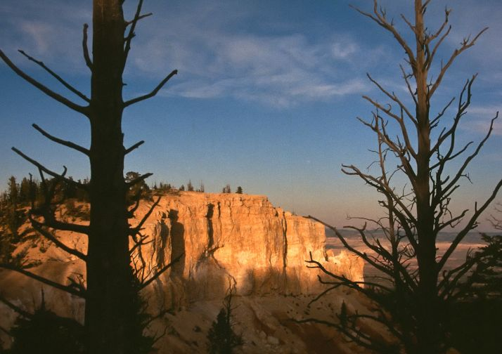 View from along the Bristlecone Loop in Bryce Canyon National Park.