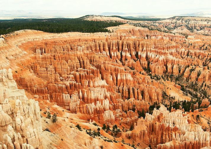 View from Bryce Point .