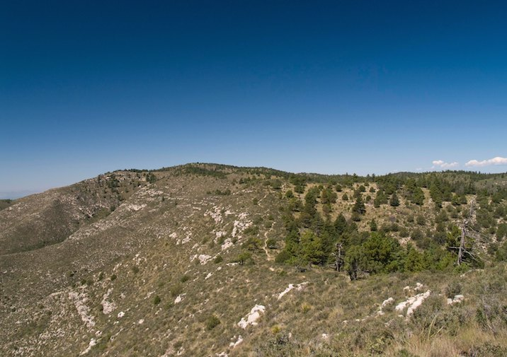 High country scenery along the Bush Mountain Trail in Guadalupe Mountains NP.