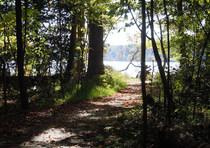 Bushey Point Trail in Leesylvania State Park near Washington D.C.