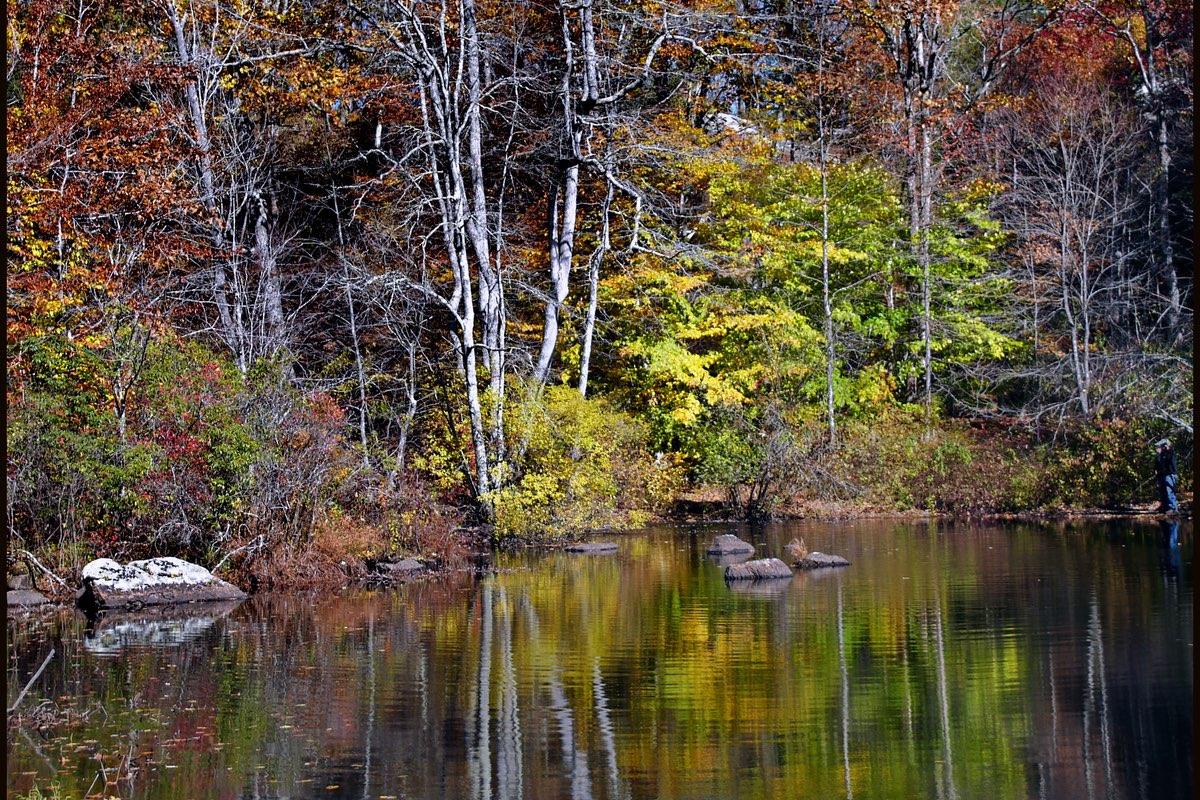 Chapman Pond in Devil's Hopyard State Park.