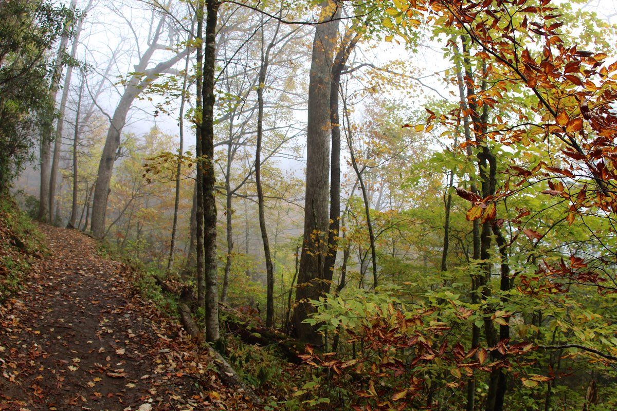 Hiking Chimney Tops Trail in Great Smoky Mountains National Park.