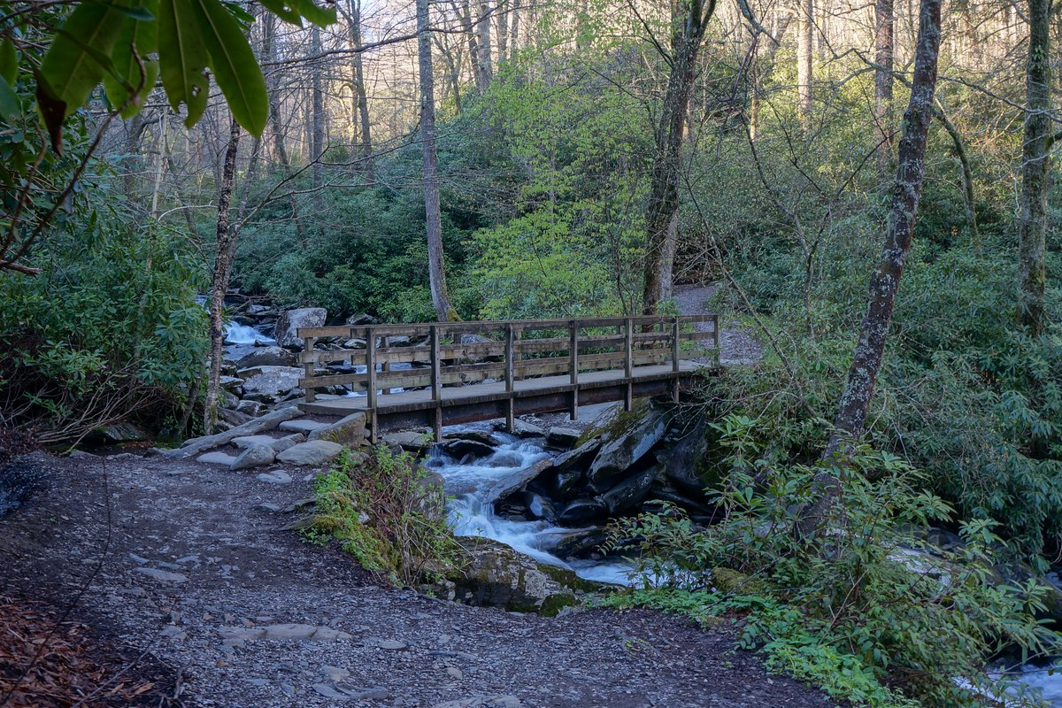Bridge along the Chimney Tops Trail in Great Smoky Mountains National Park.