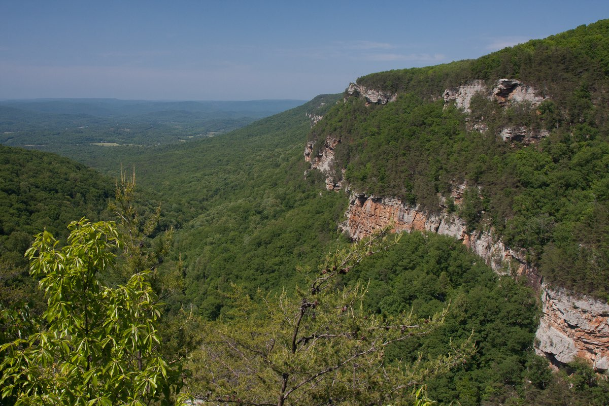Cloudland Canyon State Park in Georgia.