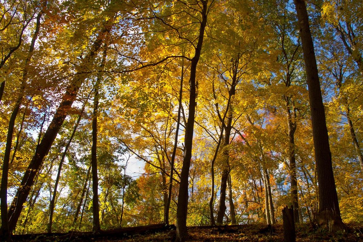 Hiking in Delaware Water Gap National Recreation Area.