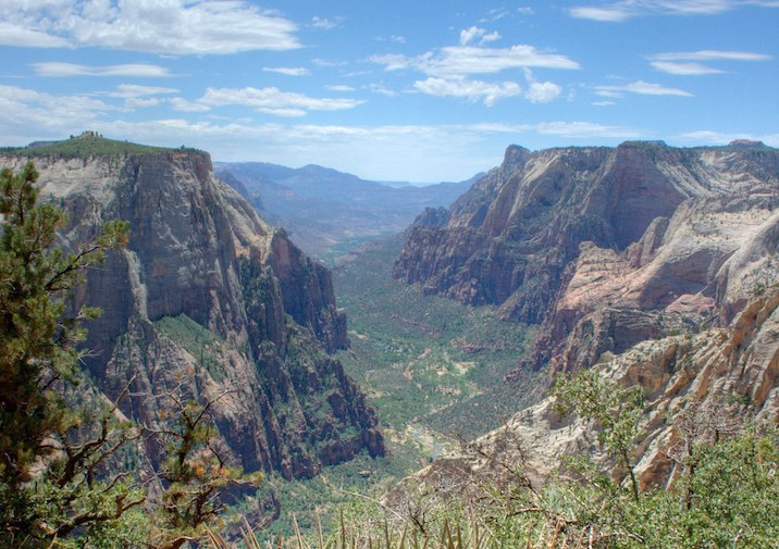 Stunning view along the East Rim Trail in Zion National Park.