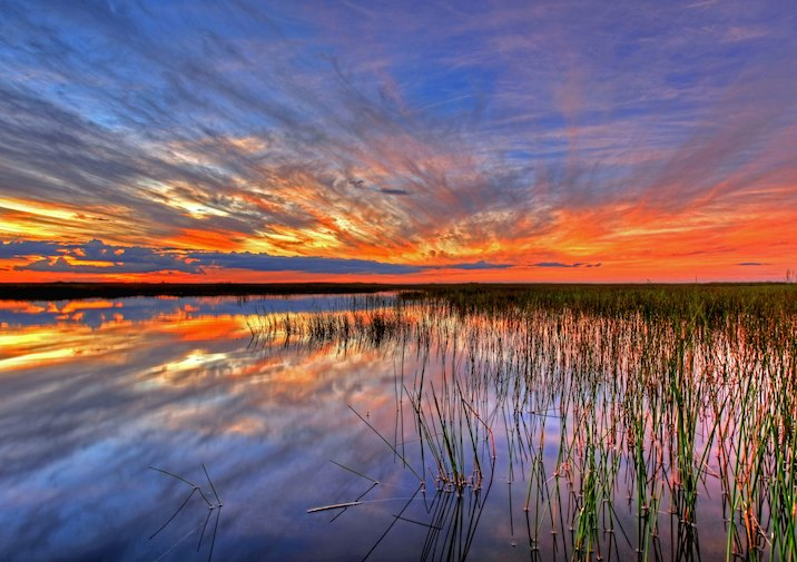 Everglades sunset.
