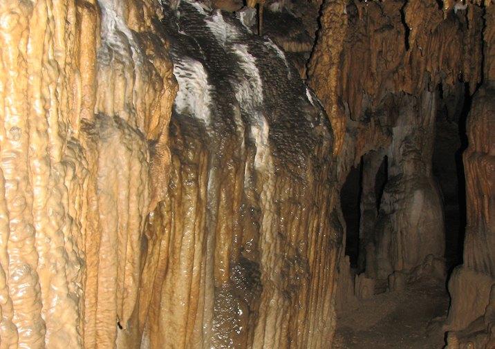 Florida Caverns State Park.