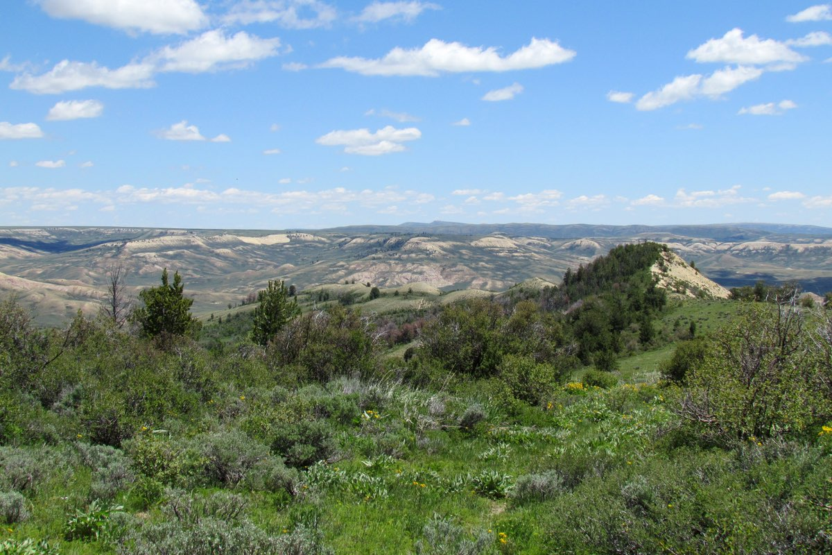Beautiful Fossil Butte National Monument, Wyoming