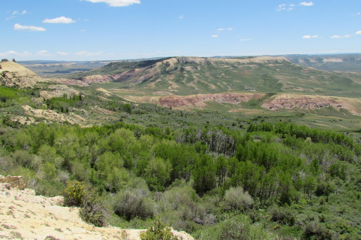 View while hiking in Fossil Butte National Monument.