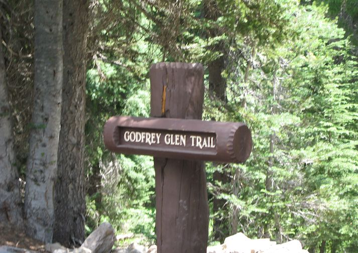 Along the Godfrey Glen Trail in Crater Lake National Park.