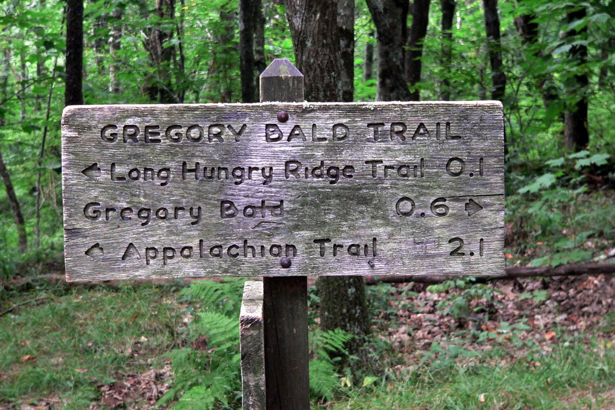 Hiking to Gregory Bald in Great Smoky Mountains National Park.
