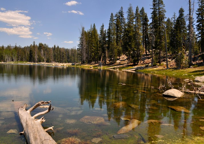 Harden Lake in Yosemite National Park, California.
