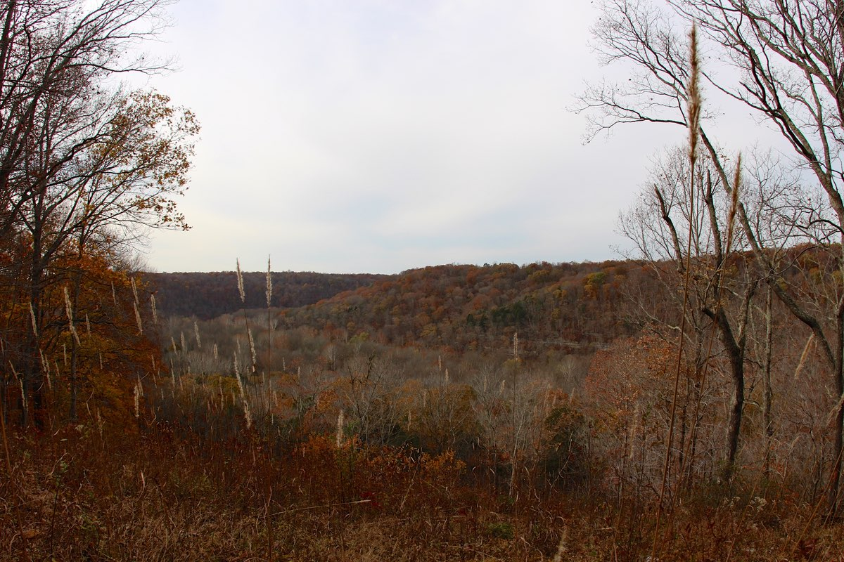 View from Sunset Point in Mammoth Cave National Park.