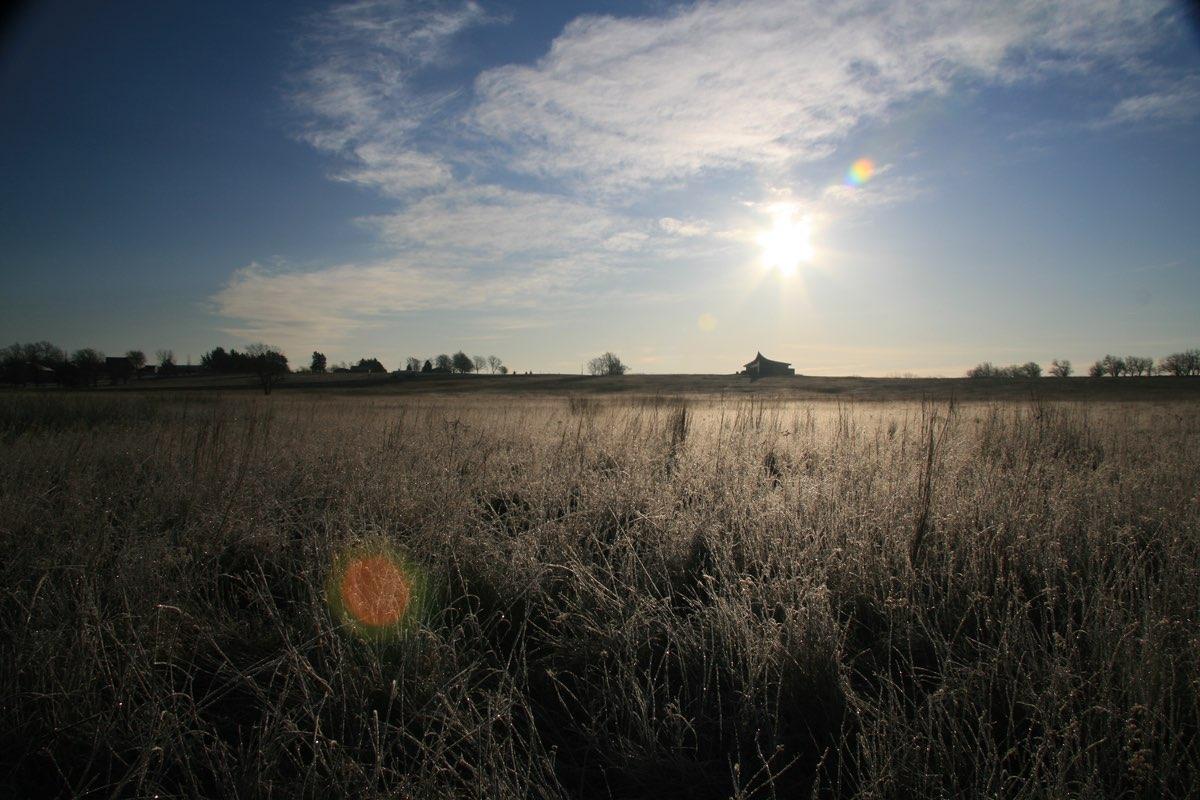 Looking across the prairie at Homestead National Monument in Nebraska.
