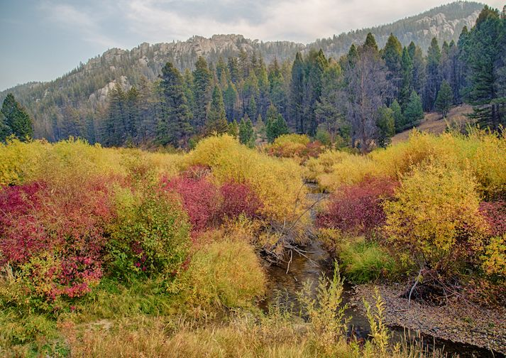 Humbug Spires near Butte Montana.