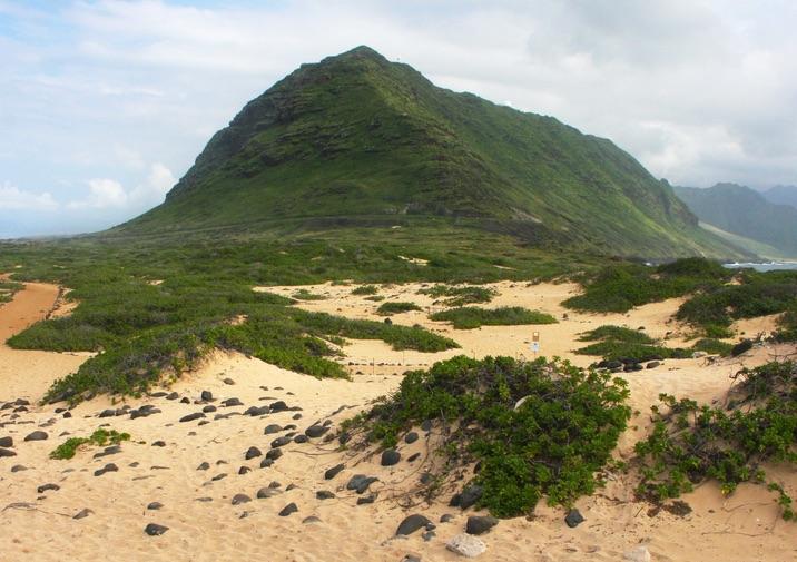 Ka'ena Point State Park O'ahu, Hawai'i.