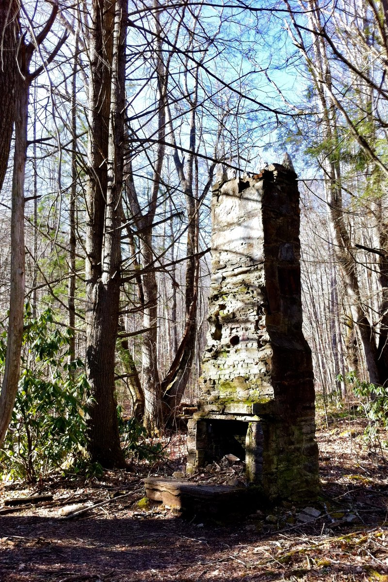 Old chimney along the Kephart Prong Trail in Great Smoky Mountains National Park.