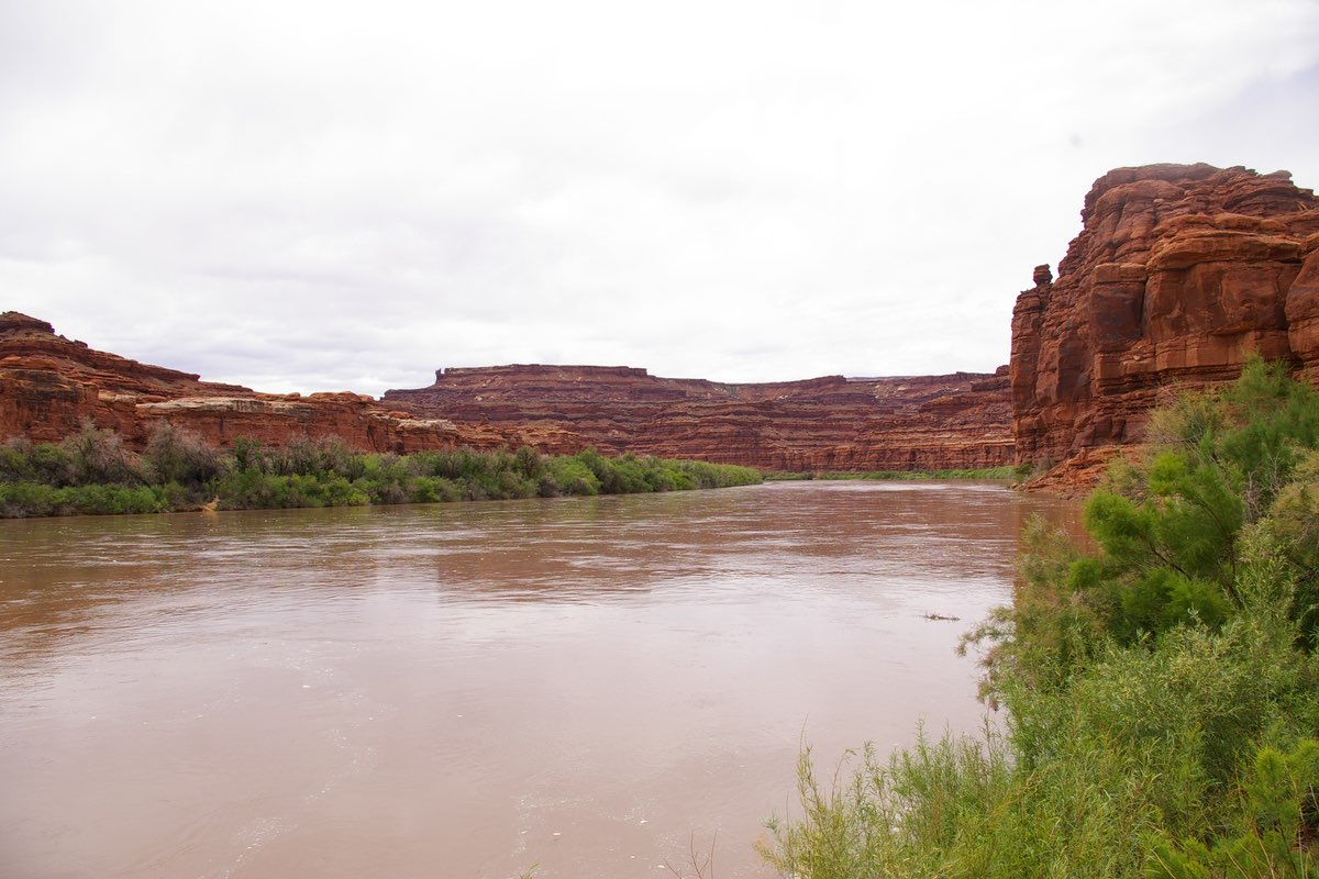 Green River from the Lathrop Canyon Trail in Canyonlands National Park.