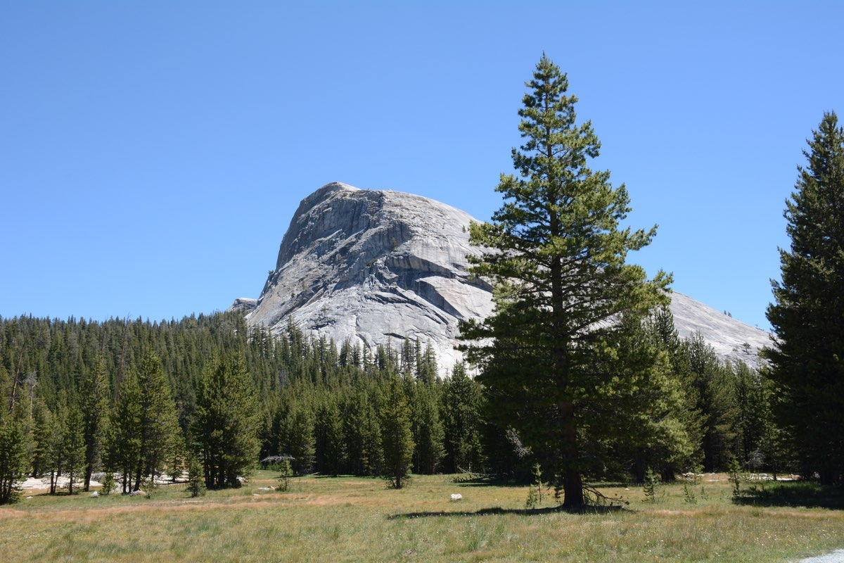 Lembert Dome in Yosemite National Park.