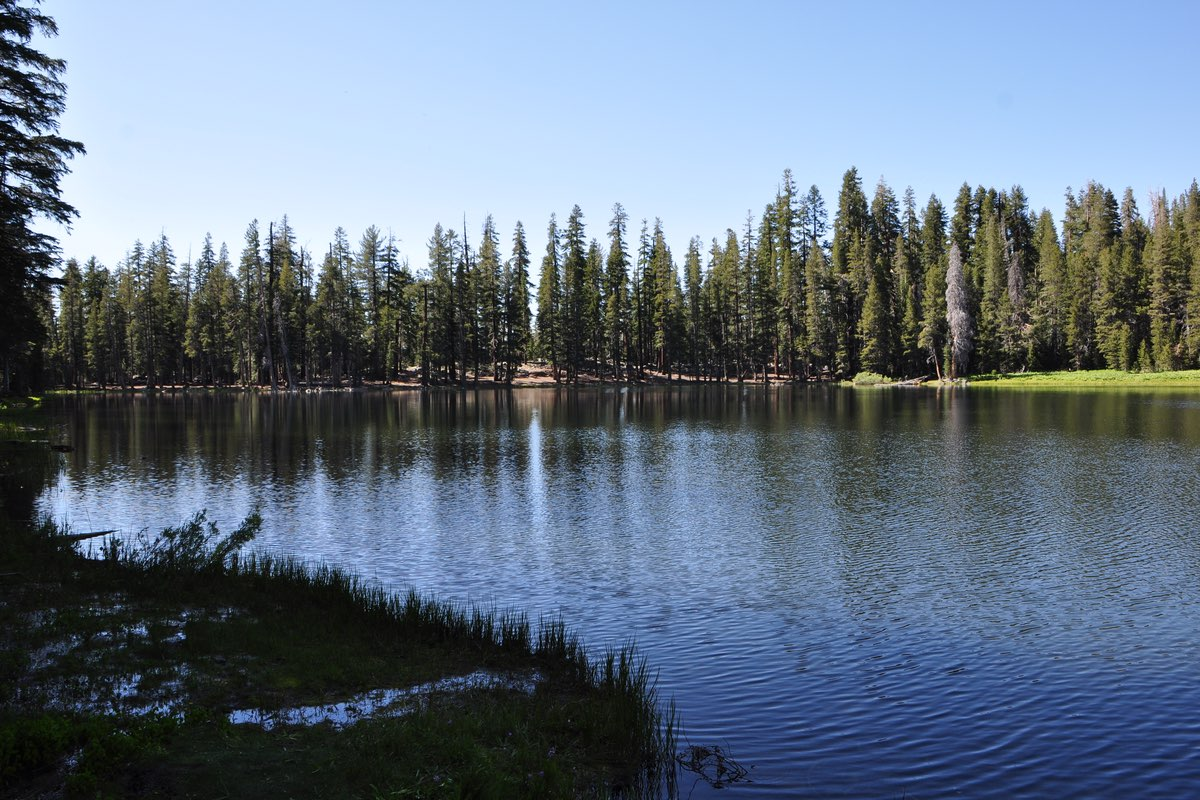 Lukens Lake in Yosemite National Park, California.