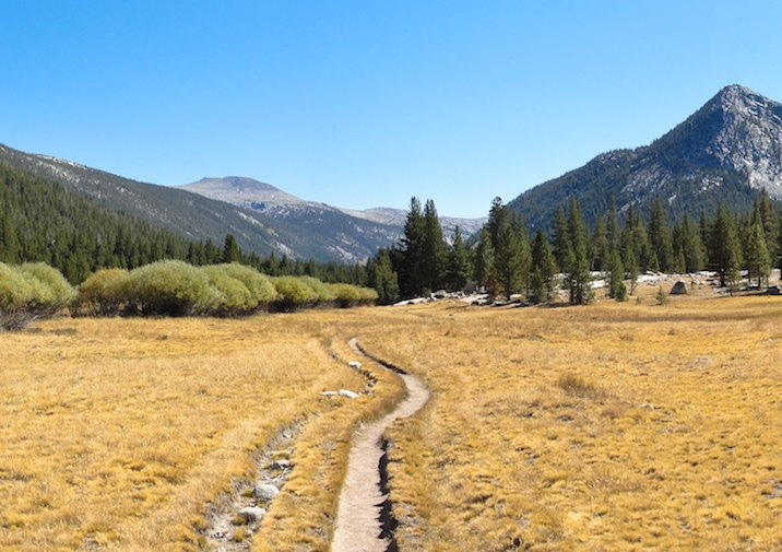 John Muir Trail leading into Lyell Canyon.