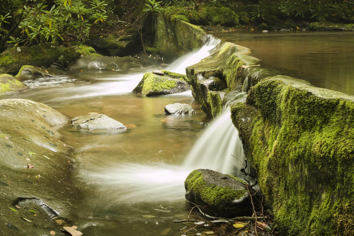 Lynn Camp Prong Cascades in Great Smoky Mountains National Park.