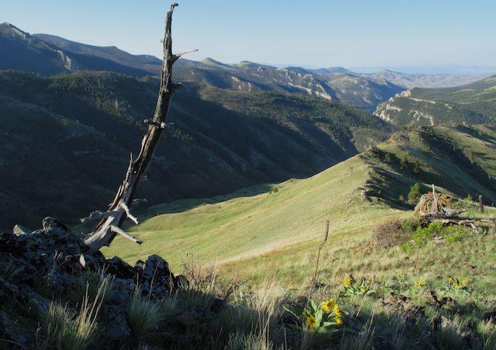 Look down at Mann Gulch near Helena Montana
