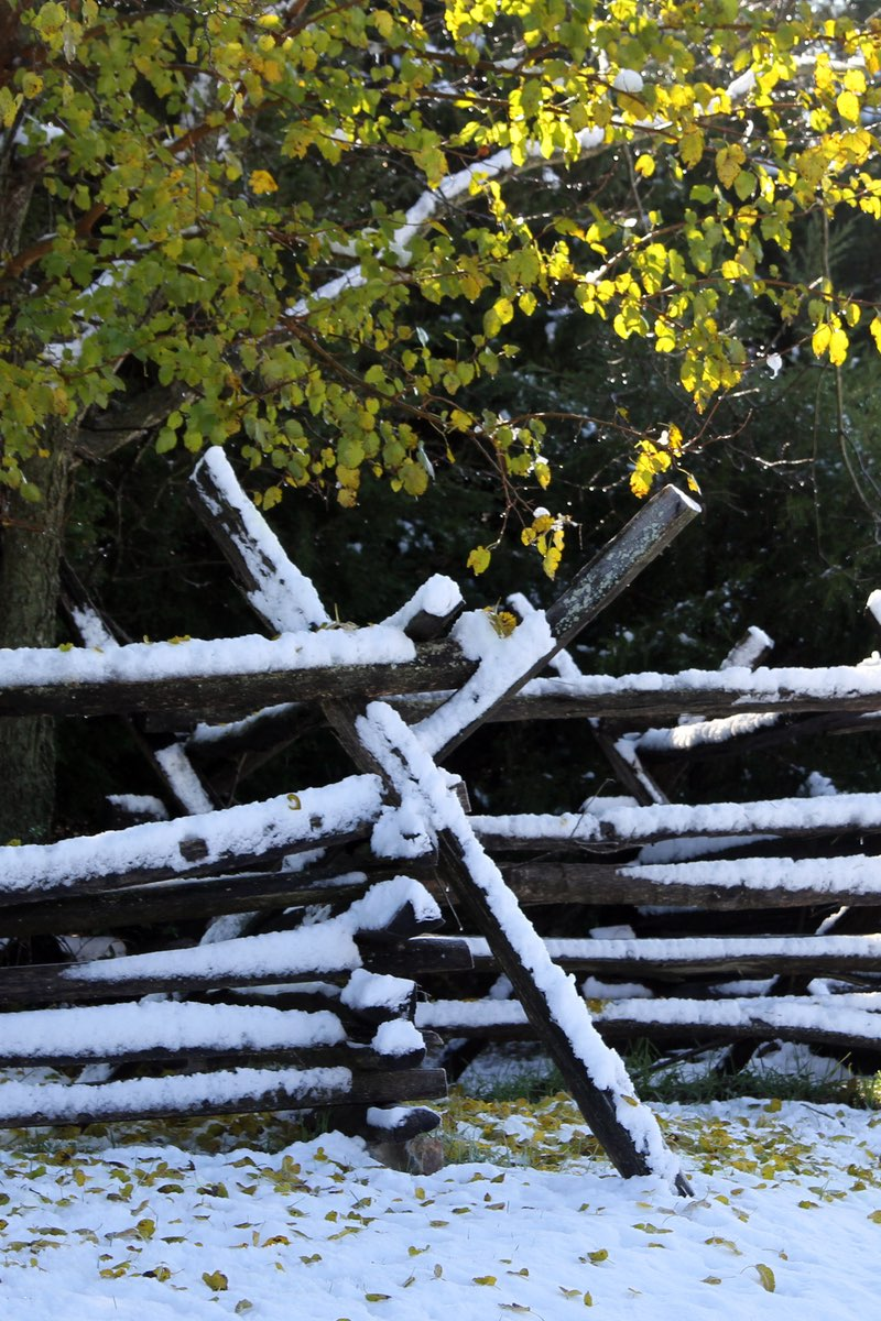 Snowy fence line at Antietam National Battlefield.