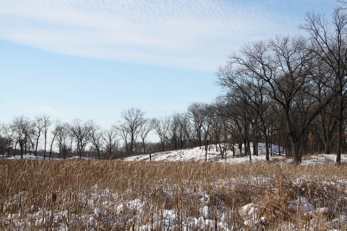 Winter hike along the Miller Woods Trail in Indiana Dunes National Lakeshore.