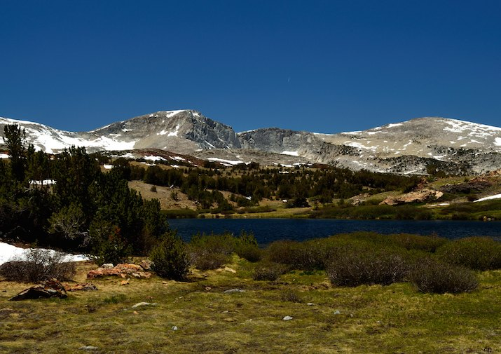 Along Mono Pass Trail in Yosemite National Park, CA.