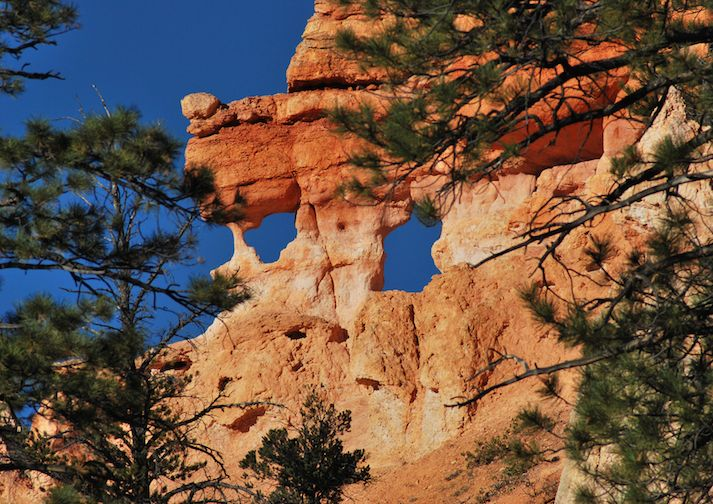 Along the Mossy Cave Trail in Bryce Canyon.