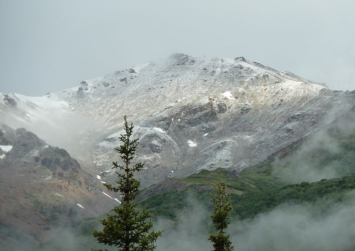 Mount Healy in Denali National Park