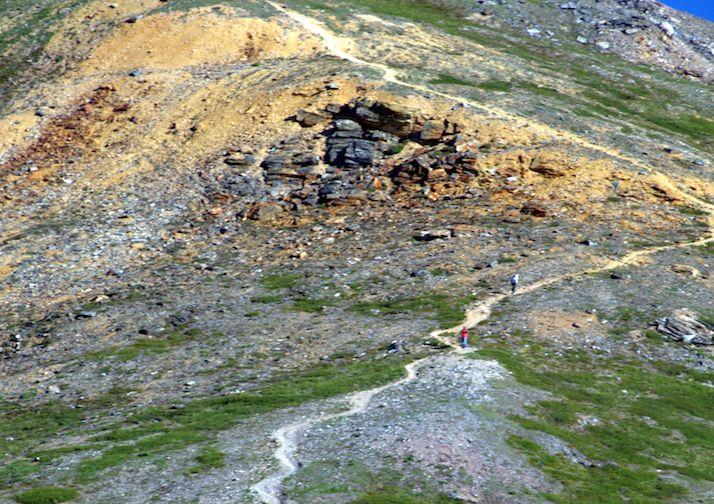 Trail up Mount Healy in Denali.