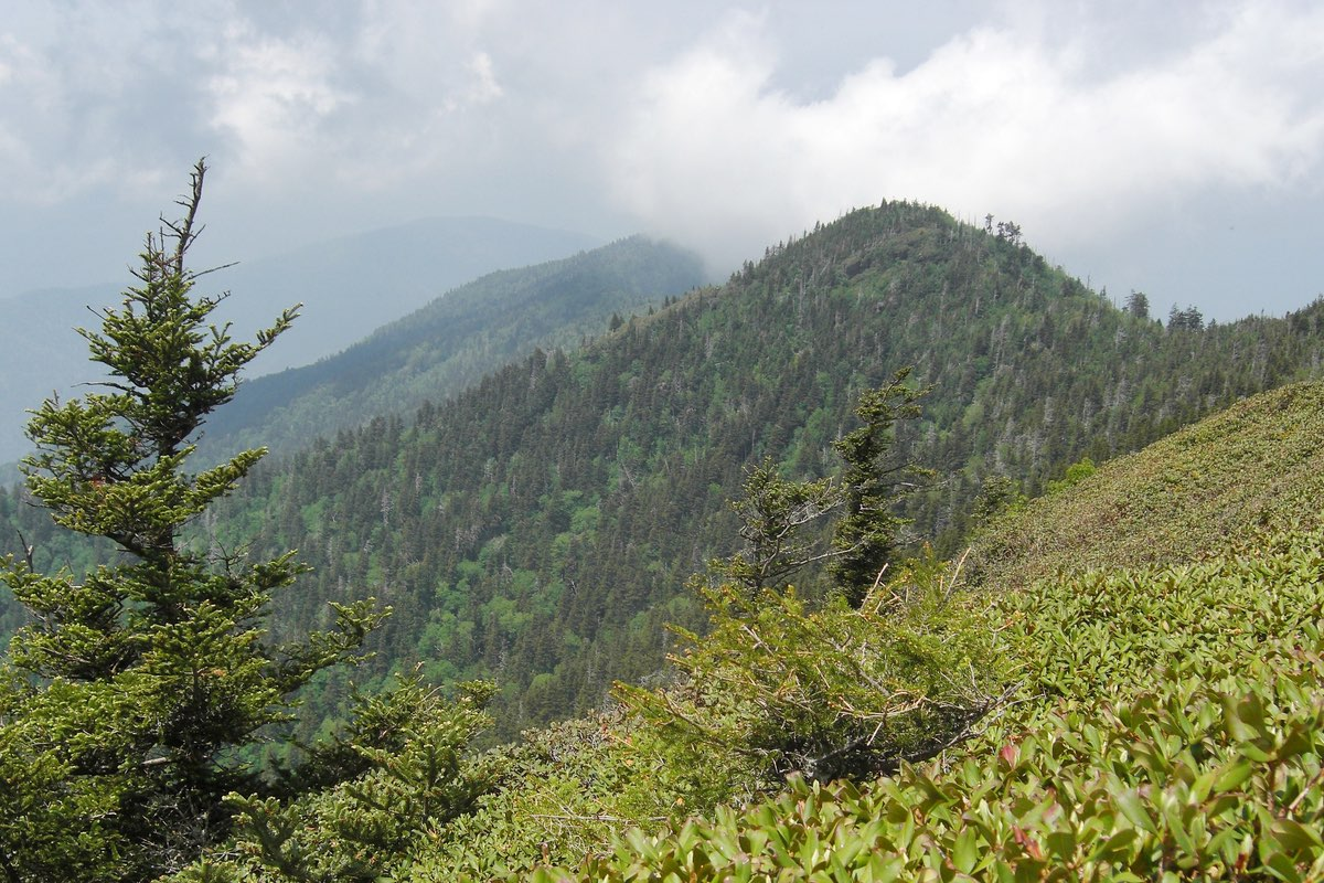 Mount LeConte in Great Smoky Mountains National Park.