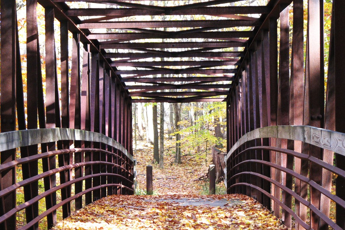 Leaf covered bridge along the Old Carriage Trail in Cuyahoga Valley National Park.