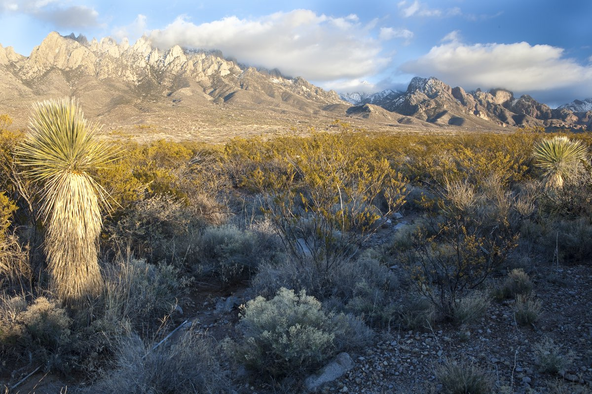 Organ Mountains National Monument near Las Cruces New Mexico.
