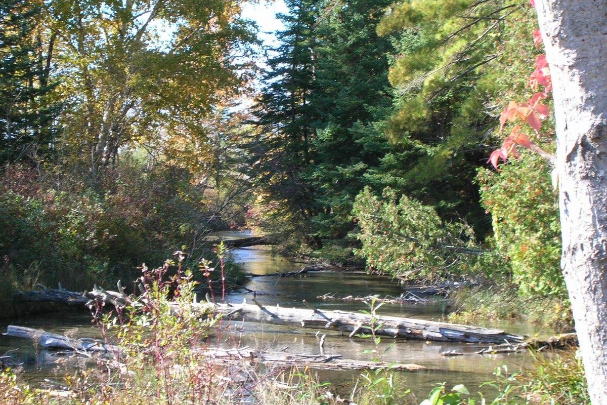 Otter Creek in Sleeping Bear Dunes National Lakeshore in Michigan.
