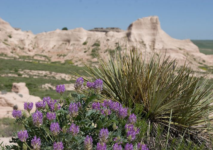 Pawnee Buttes Trail near Fort Collins Colorado