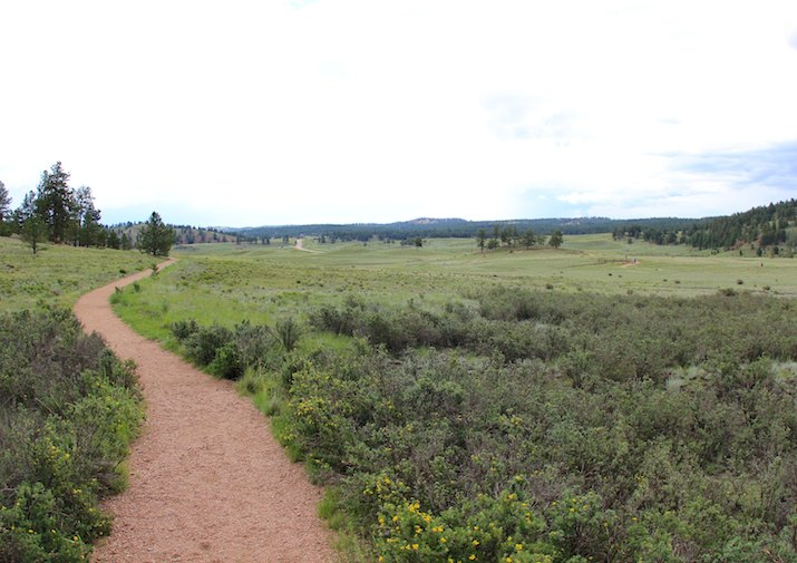 Petrified Forest Loop in Florissant Fossil Beds National Monument near Colorado Springs.