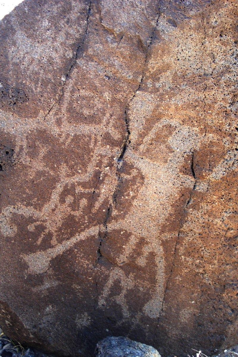 Petroglyph along Boca Negra Canyon Trails in Petroglyph National Monument.
